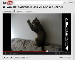 Feline A-Scale on YouTube